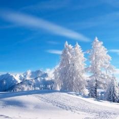 hiver1-sq